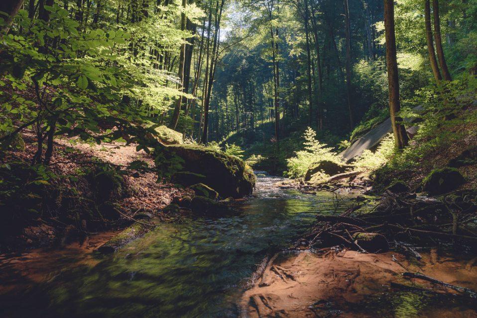 Welches Objektiv wofür - Weitwinkel für Landschaftsfotos