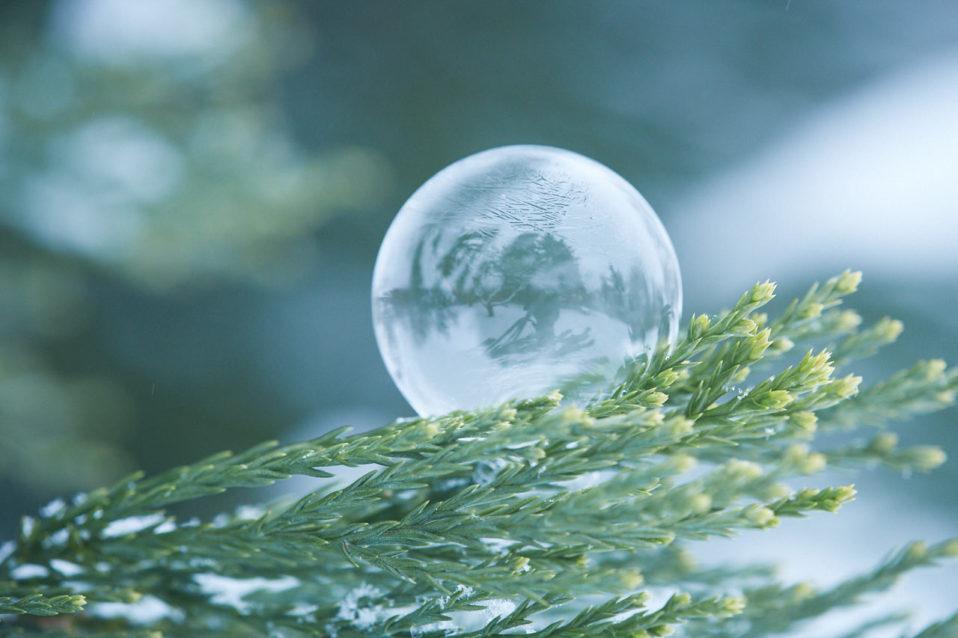 gefrorene seifenblasen fotografieren