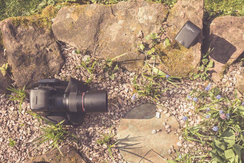 Blitz für die Makrofotografie im Einsatz