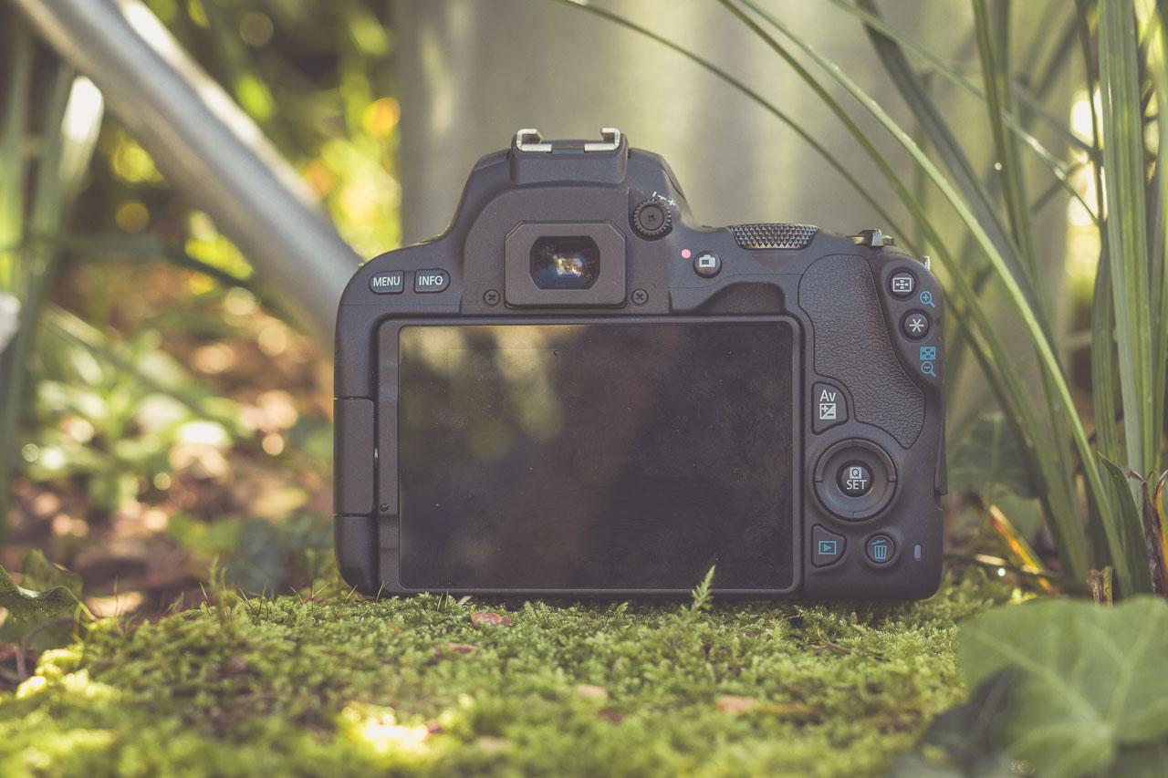 Canon EOS 200D - mein Praxis Test und Review